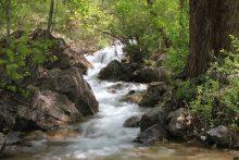 IMG_4097 creek