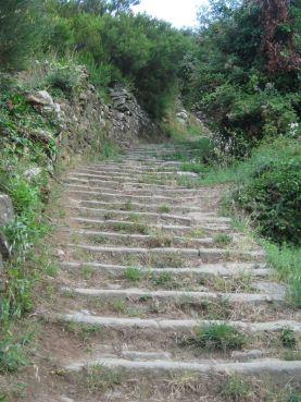 IMG_5079 stairs