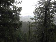 IMG_5834 rainy view