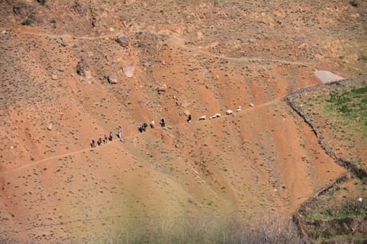IMG_2548-hikers