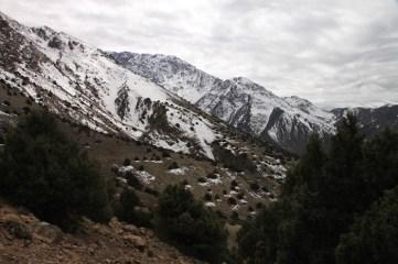 IMG_2640-mountain