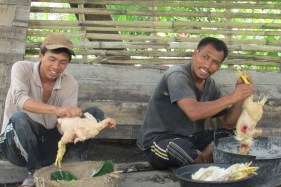 Two locals prepare chickens