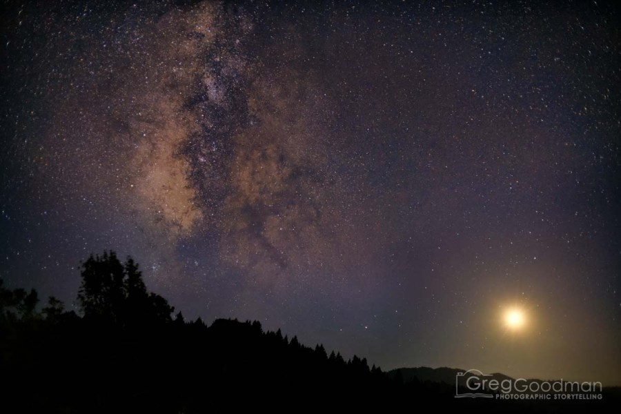 The Milky Way on a full moon night above Armstrong Woods Park in Guerneville, California