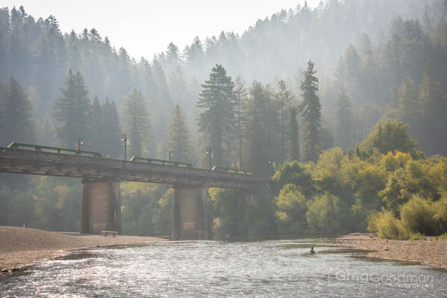 The Russian River, surrounded by redwood trees, flows through Monte Rio on its way to the Pacific Ocean