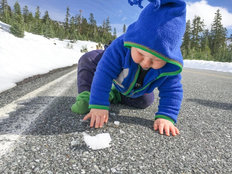 My son, Bodhi, plays with snow for the first time on a hike up Mt. Shasta
