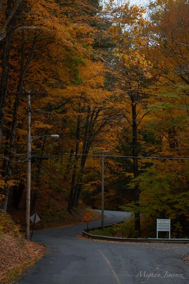 fall16_0114