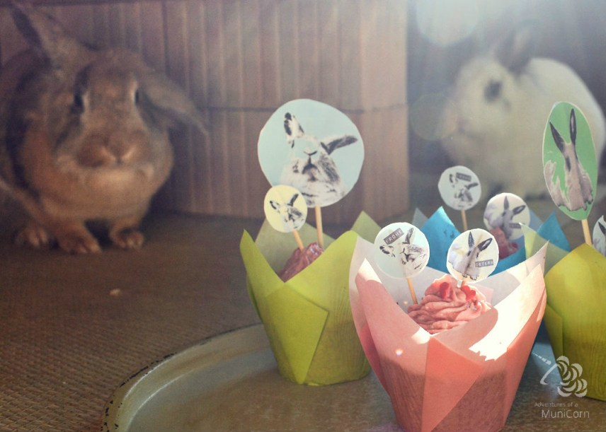 easter bunnies in real and printed