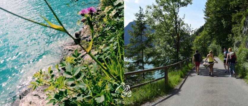 Rundweg am Walchensee