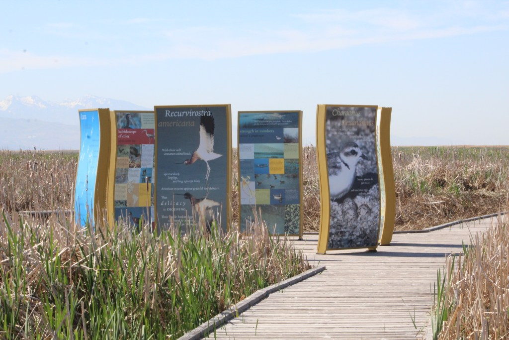 Information at Great Salt Lake Shorelands Preserve