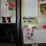 My Fridge – Exposed!