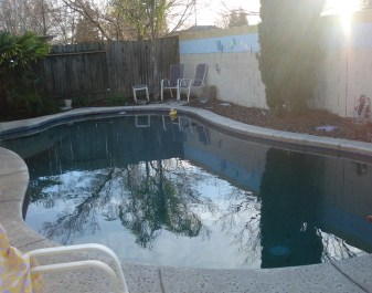 Swimming in Winter 004