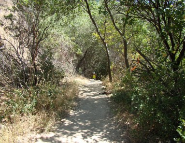 She Rocks the Trails 042