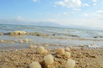 Dead sea salt rocks