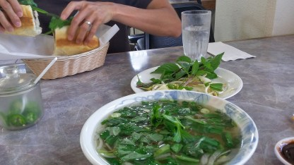 A bowl of steaming pho--one of my favorite indulgences
