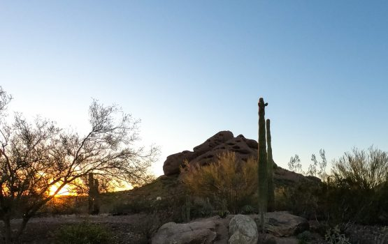 10 Common Mistakes Visitors Make When Visiting Arizona