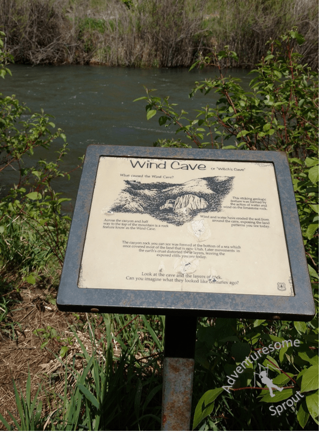Plaques along the trail give descriptions of the trail's natural features.