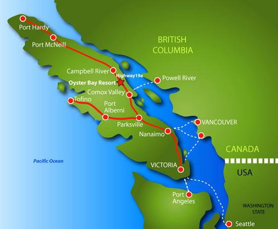 Kayaking Vancouver Island Kayak with Orca Whales Sea