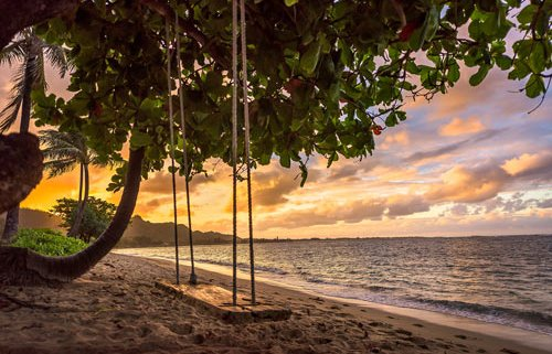 Sunset Beach Swing