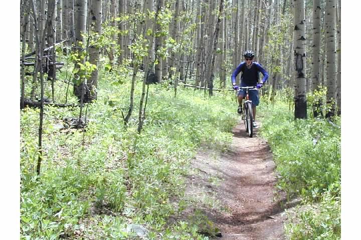 mountain biking in the Aspens