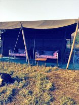 serengeti-halisi-camp-1