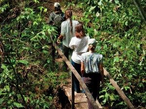 Hiking in the Peruvian Amazon Rainforest