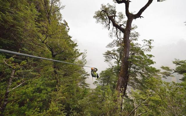 Ziplining in the Huilo Huilo Biological Reserve
