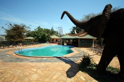 Swimming pool with elephant.