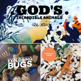 plastic animals and sensory items