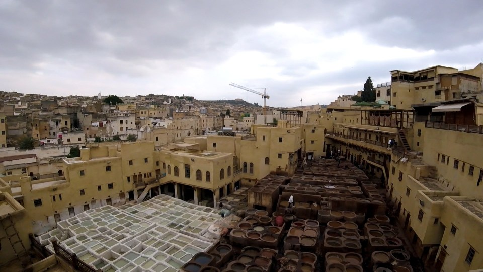 Chouara Tannery, Fez, Morocco | Adventures with Shelby