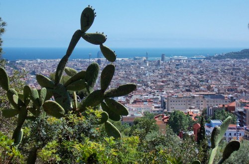 Barcelona, Spain | Adventures with Shelby