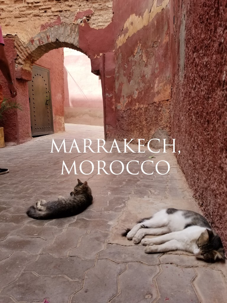Marrakech, Morocco | Adventures with Shelby