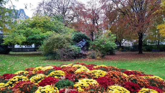 Luxembourg Garden in the Fall | Adventures with Shelby