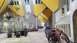 Cube Houses in Rotterdam | Adventures with Shelby
