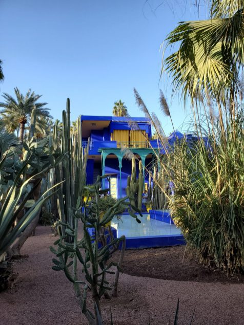 Jardin Majorelle | Adventures with Shelby