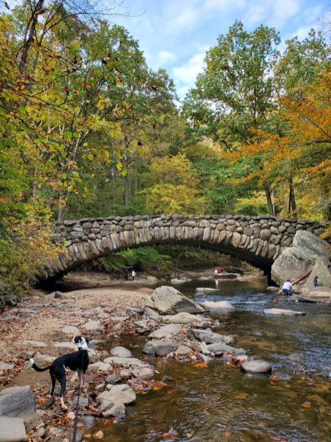 Boulder Bridge in Rock Creek Park | Adventures with Shelby