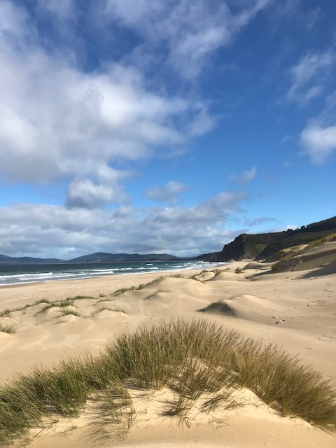 Adventure Trails Tasmania can show you the wonders of Bruny Island