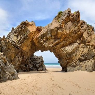 Explore Bruny Island with Adventure Trails Tasmania on a Bruny Island Discovery Day Tour