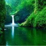 La Reserva Nacional Tambopata y el Parque Nacional Bahuaja