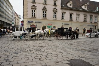 So you are literally in the city center and it smells like you're in horse barn while you're standing outside of St. Stephen's. Seeing and more importantly, smelling the horses, definitely made me wonder if this is how Vienna would have smelled prior to the 20th century.