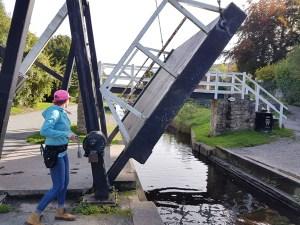 winding bridge