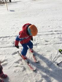 skiing_27035020330_o