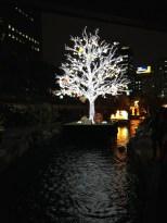 Tree lantern.