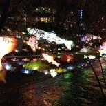 Fish lanterns.