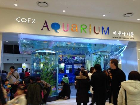 Entrance to Coex Aquarium.