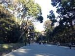 Lovely park.