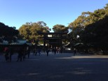 Arriving at the Meiji Shrine.