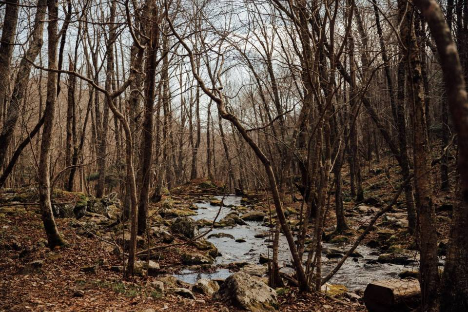 multi-day hike in shenandoah