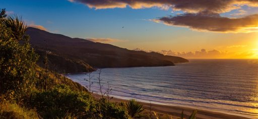 raglan Best Things To Do on the North Island new zealand