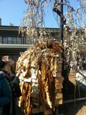 Praytablets of wood under a Plumtree