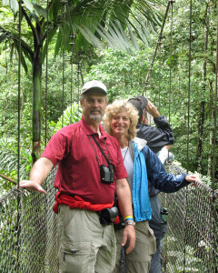 On the Hanging Bridges